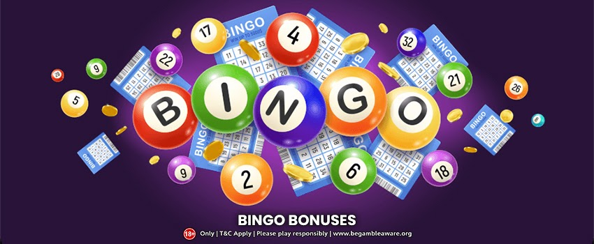 Understanding the Ins and Outs of Bingo Bonuses